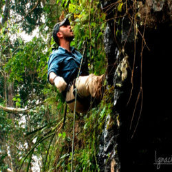 Ignacio Solano, expedición Selva de Misiones