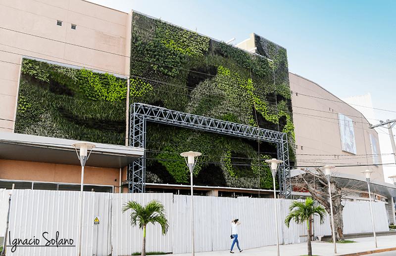 Jardín vertical más grande de Bolivia