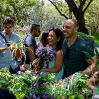 Ignacio Solano en el curso de jardines verticales