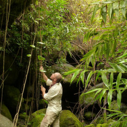Ignacio Solano, expedición a las Islas Reunión