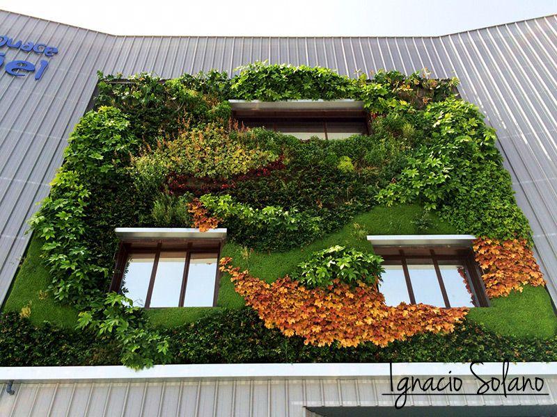 Trabajos de ignacio solano ignacio solano for Jardines verticales alicante