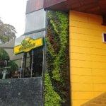 Jardines verticales Ignacio Solano