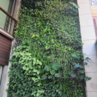 Villarreal disfruta de un jardín vertical diseñado por Ignacio Solano