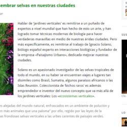 Ignacio Solano, el hombre que siembra selvas en las paredes