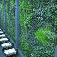 El jardín vertical interior más grande de Europa de Ignacio Solano