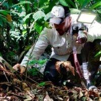 Ignacio Solano realiza una expedición a la selva de Panamá para descubrir nuevas especies