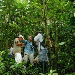 Expedición de Ignacio Solano a Ecuador