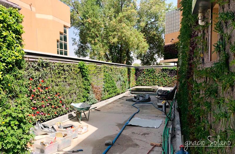 Jardín vertical Arabia Ignacio Solano