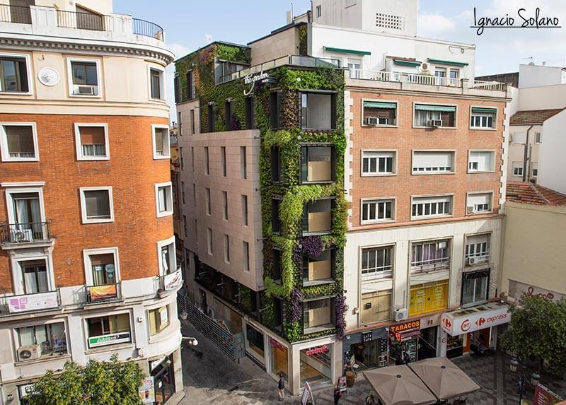 Jardín vertical de Ignacio Solano en la calle Montera, Madrid